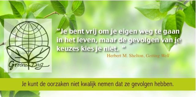 Shelton Q